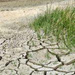 Klimaziele erreichen: Kommission schlägt Neuausrichtung von Wirtschaft und Gesellschaft vor