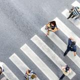 Foto: ultramansk; Dmytro - stock.adobe.com