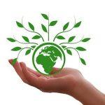 Deutsche Unternehmen fordern Umsetzungsoffensive für Klimaneutralität - jetzt!